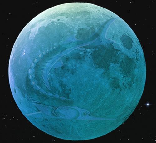 the full Sturgeon moon