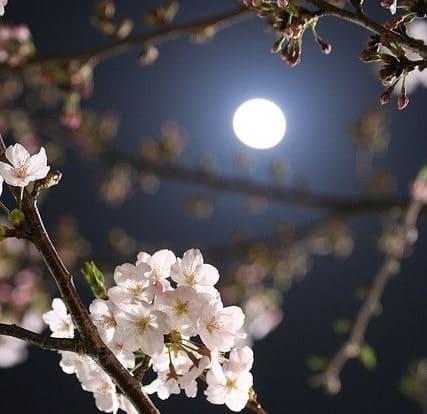 superluna di maggio